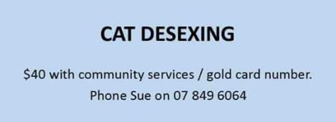 cat desxing sue